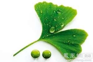 上海市药监局:多家公司银杏叶片不合格