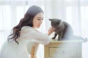 浙江嘉善情侣两万元卖了亲生女儿,转身花两千买了只宠物猫