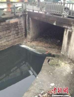 浙江温州又一环保局长被邀下河游泳 价码升至30万元(图)
