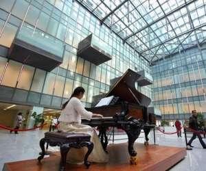 南京一医院摆放700万元钢琴 称用音乐缓解病痛