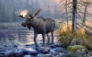 神兽踩空掉千岛湖 有角有蹄有须像牛像羊但又什么都不像?