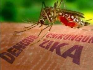 世卫组织宣布寨卡病毒为国际公共卫生紧急状况