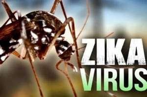 钟南山建议建质控中心研发无害灭蚊器