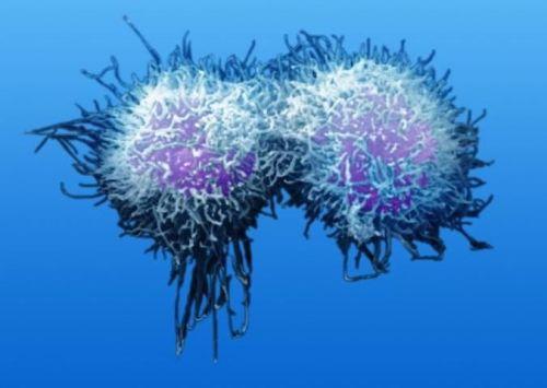 癌症患者为什么会出现持续性低烧