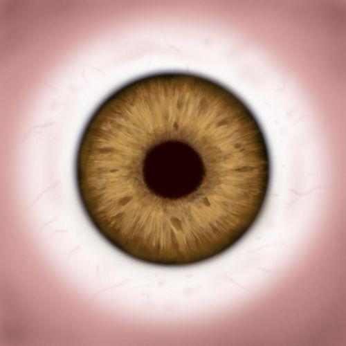 8个用眼好习惯 告别近视眼