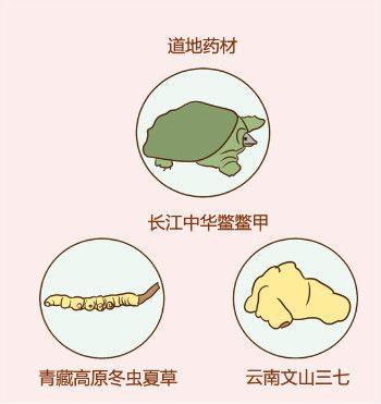 治疗肝纤维化选什么药好,复方鳖甲软肝片在天津哪儿买?这里给您指路